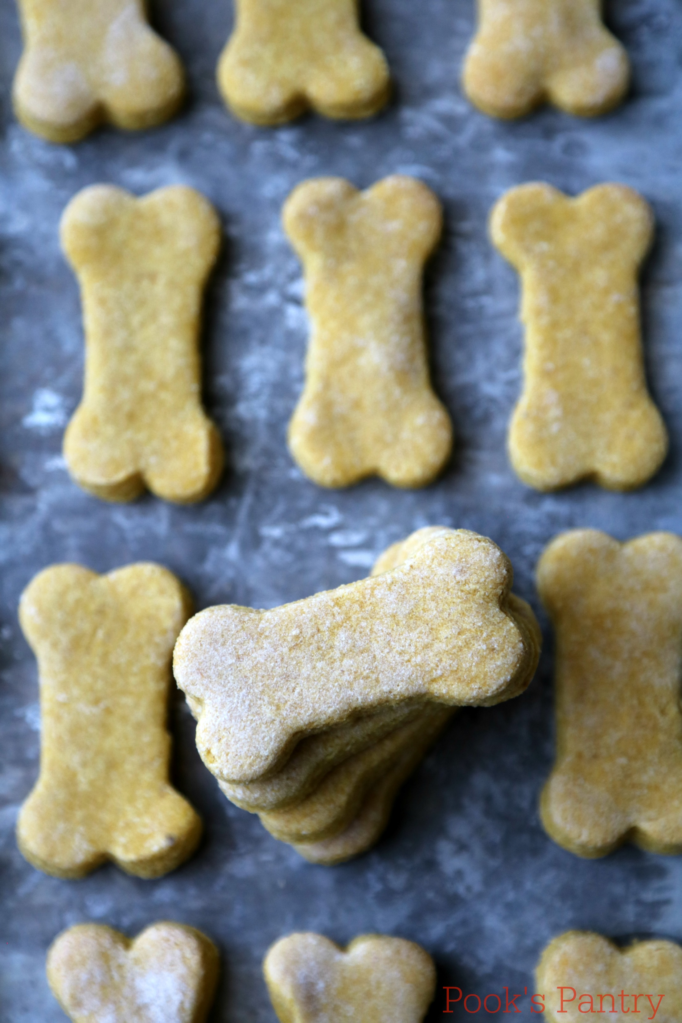 Pumpkin Banana Dog Treats - Pook's Pantry
