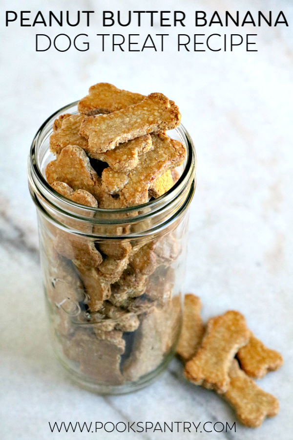 dog treats stacked inside tall clear glass jar