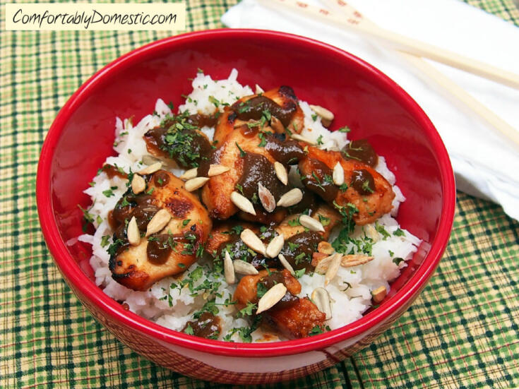 Chicken Satay with Coconut Rice {Nut-Free}