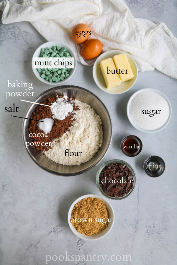 ingredients for chocolate mint biscotti