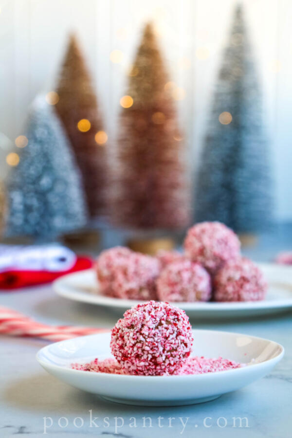 peppermint rum ball on small white plate