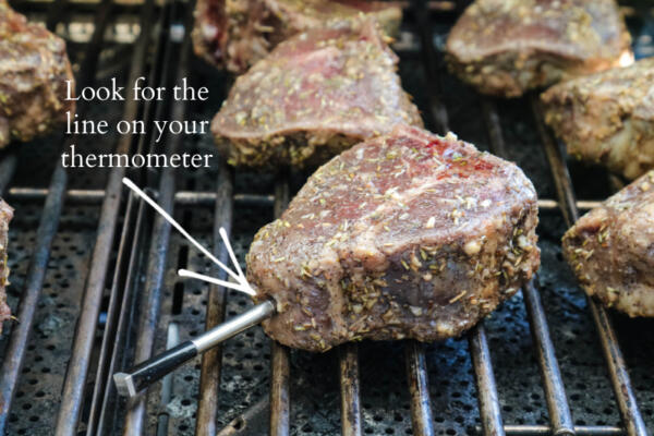 lamb loins on the grill with thermometer