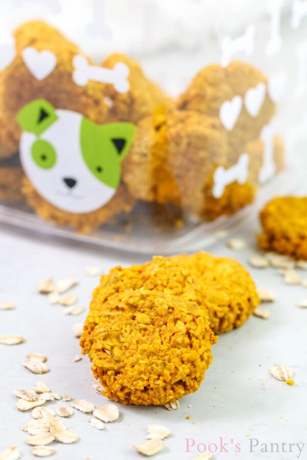 homemade dog treats with turmeric and pumpkin with oats