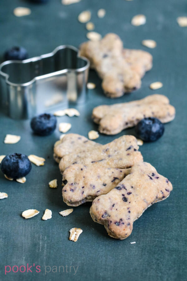 Homemade dog treats with blueberries and oats with a bone shaped cookie cutter in the background.