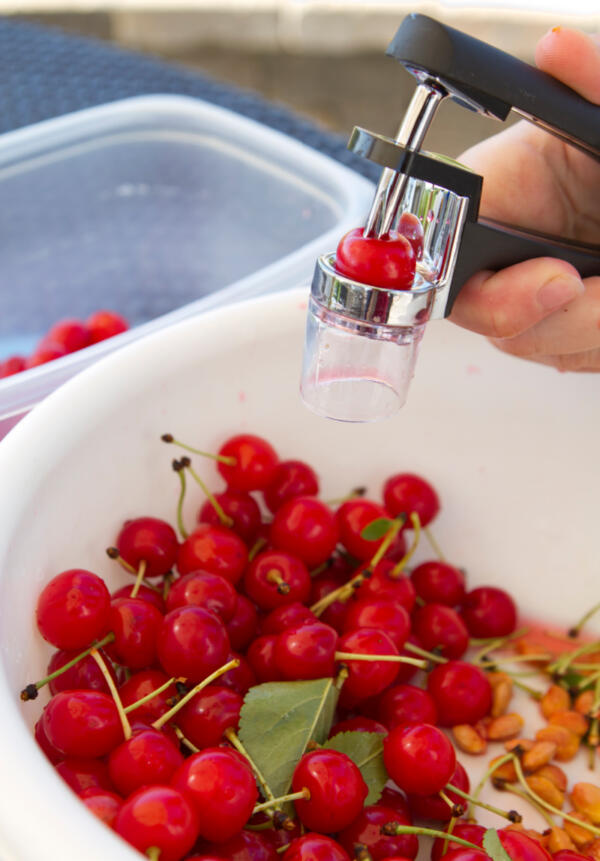 Pitting fresh cherries in a white bowl using a cherry pitter.