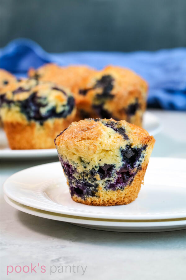 Blueberry muffin on round, white plate.