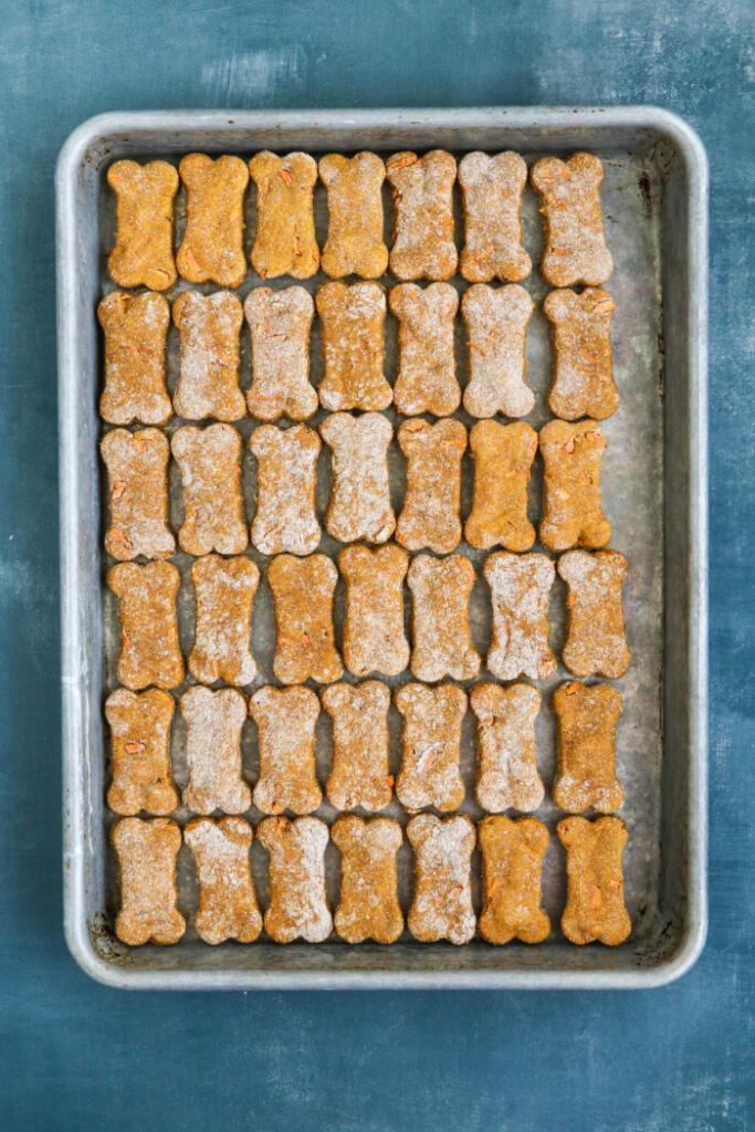 Pumpkin and carrot treats on baking sheet.