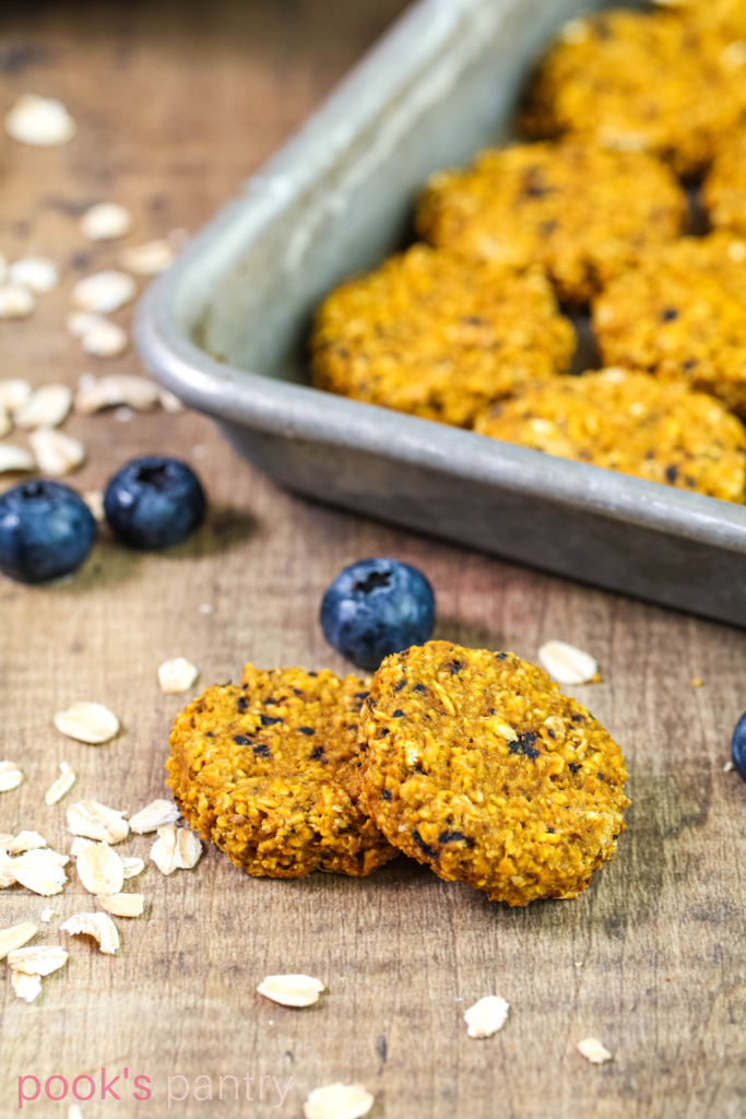 Blueberry pumpkin dog treats with oats on the side and blueberries in the background.